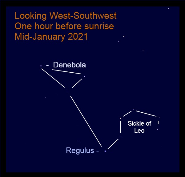 The westward-facing Lion (Leo) is in the west-southwest during winter mornings.