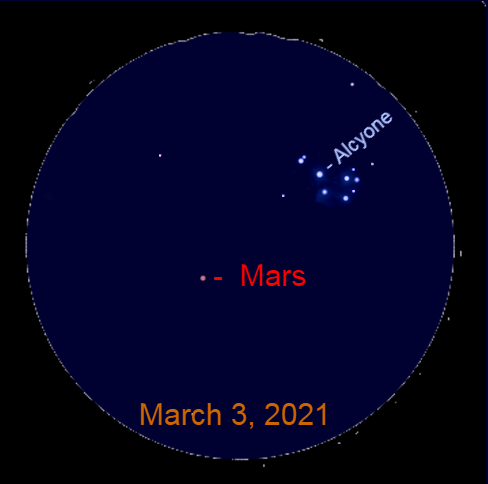 2021, March 3: This binocular view shows Mars 2.6° to the lower left of Alcyone, the brightest star in the Pleiades star cluster.