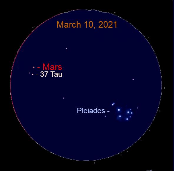2021, March 10: Through a binocular, Mars is 0.3° above 37 Tauri (37 Tau).