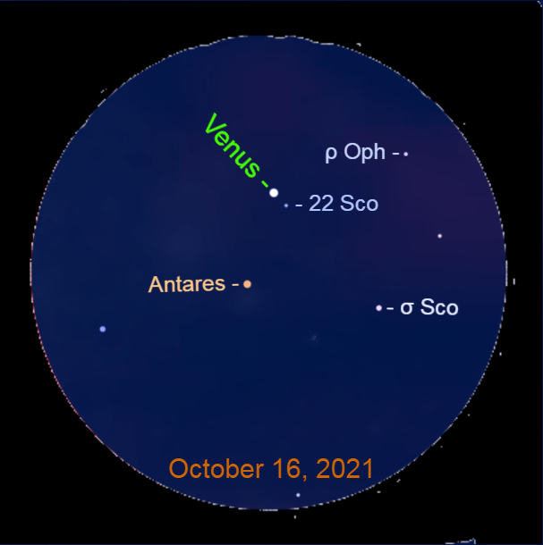 2021, October 16: Venus passes Antares. In this simulated binocular view note the locations of the planet with the starry background.