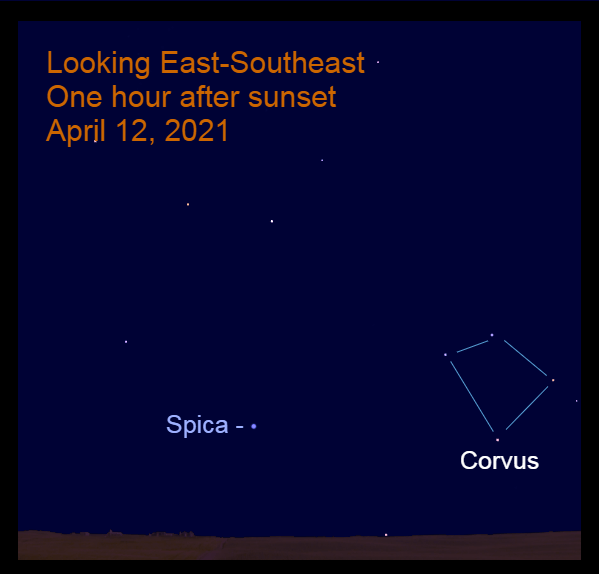 2021, April 12: Spica rises at sunset. An hour later it is low in the east-southeast. Corvus the Crow is nearby.