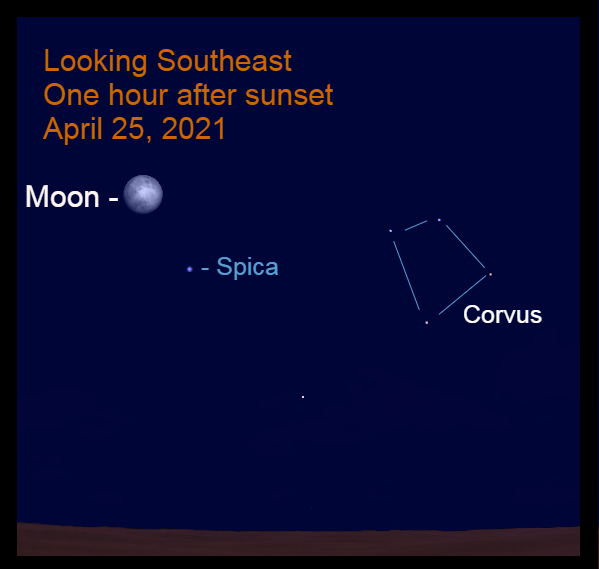 2021, April 25: The bright moon is in the southeast, 6.1° to the upper left of Spica.