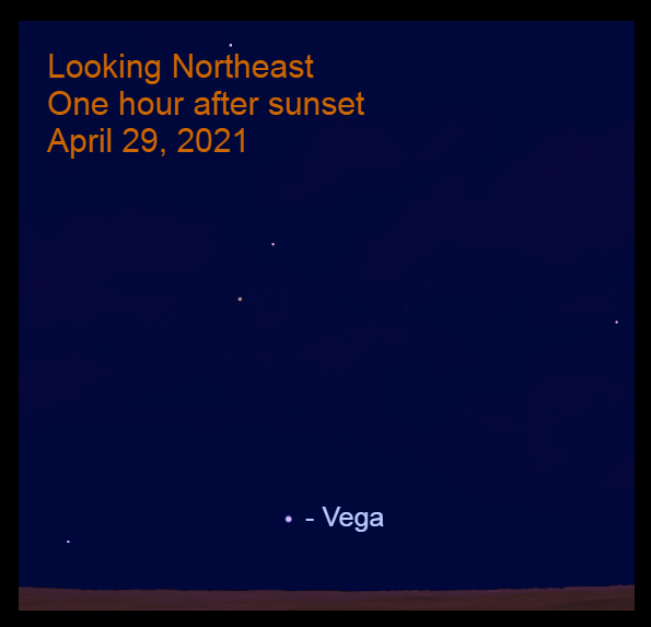 2021, April 29: Vega rises at sunset. It is low in the northeast an hour later.