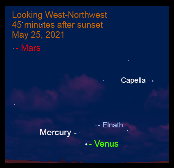 May 25: Mercury is 3.3° to the upper left of Venus and 4.4° to the lower left of Elnath.
