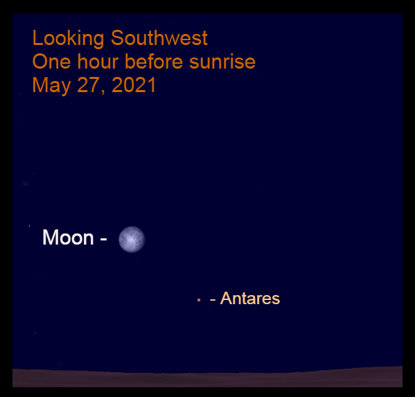 2021, May 27: One hour before sunrise, the bright moon is 9.3° to the upper left of Antares in the southwest.
