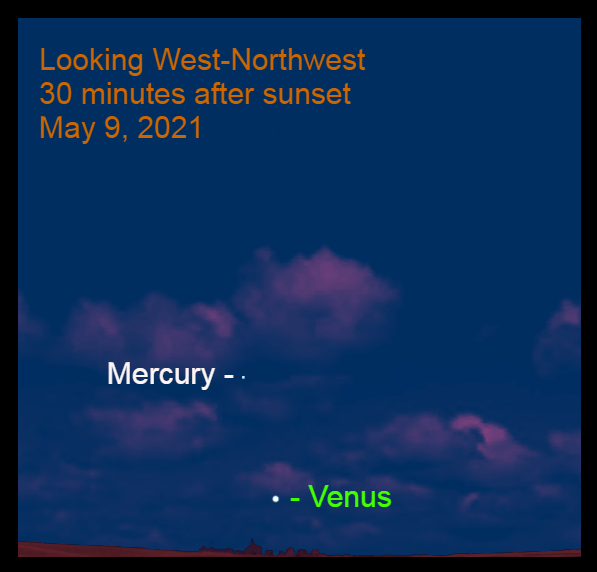 2021, May 9: Thirty minutes after sunset, brilliant Venus is low in the west-northwest. Mercury is 8.8° to the upper left of Venus.