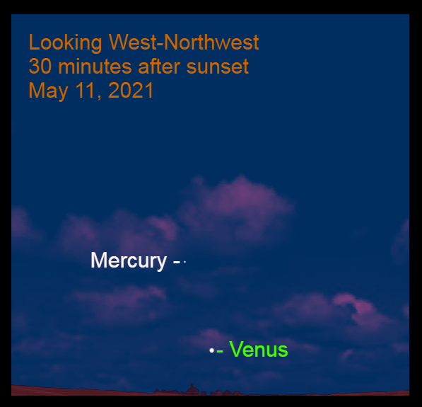 2021, May 11: Thirty minutes after sunset, Venus is 5.0° above the west-northwest horizon. Mercury is 9.1° to the upper left of Venus.