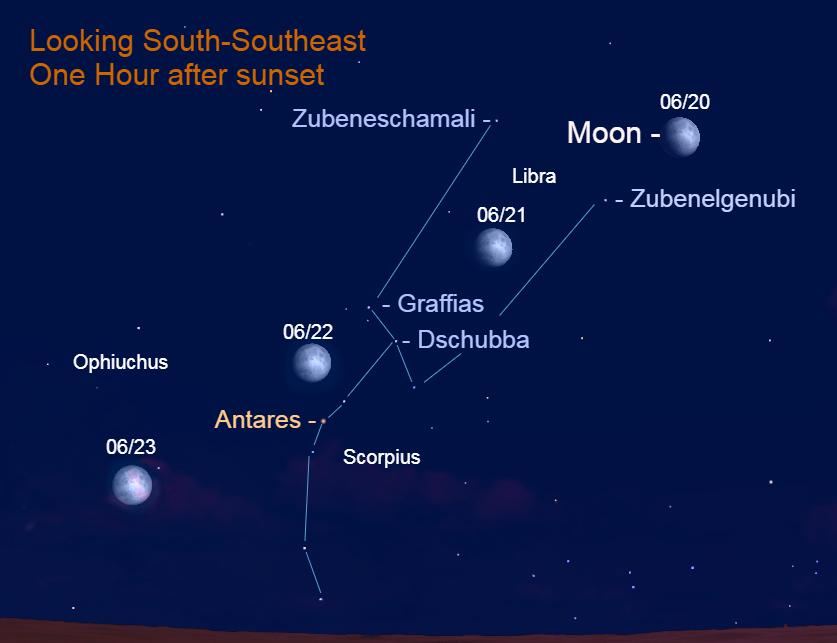 June 20 – June 23, 2021: The bright moon appears near the classic Scorpion. On the first two evenings, the lunar orb appears near the pincers and on the next two, it's near the scorpion's heart.