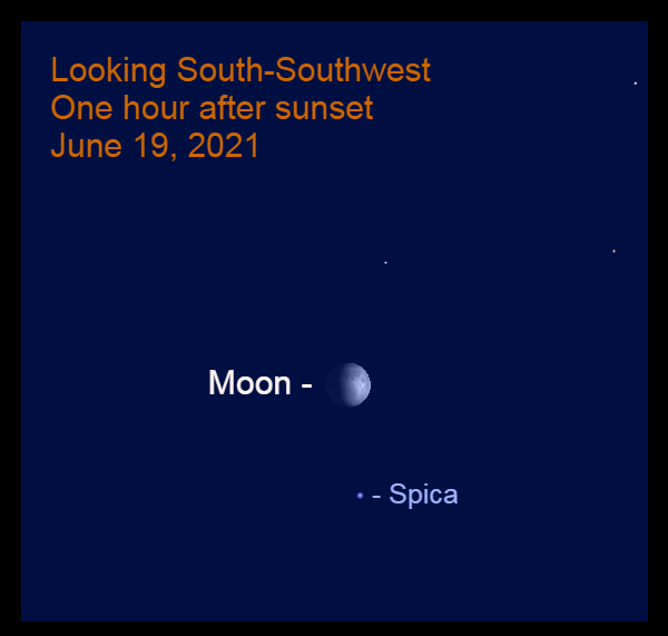 2021, June 19: An hour after sunset, the waxing gibbous moon is 5.1° above the star Spica, the brightest in the constellation Virgo.