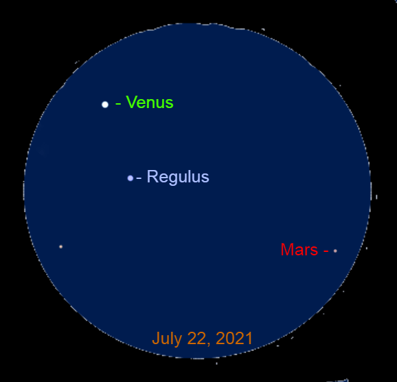 2021, July 22: Through a binocular, Venus is 1.5° to the upper left of Regulus, Mars is 5.5° to the lower right of Venus.