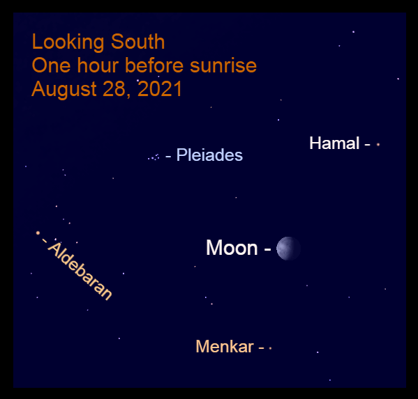 2021, August 28: The gibbous moon approaches the Pleiades star cluster. It is above the star Menkar.