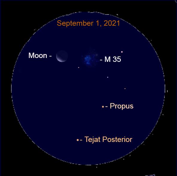 2021, September 1: Through a binocular, the crescent moon is near the star cluster Messier 35.