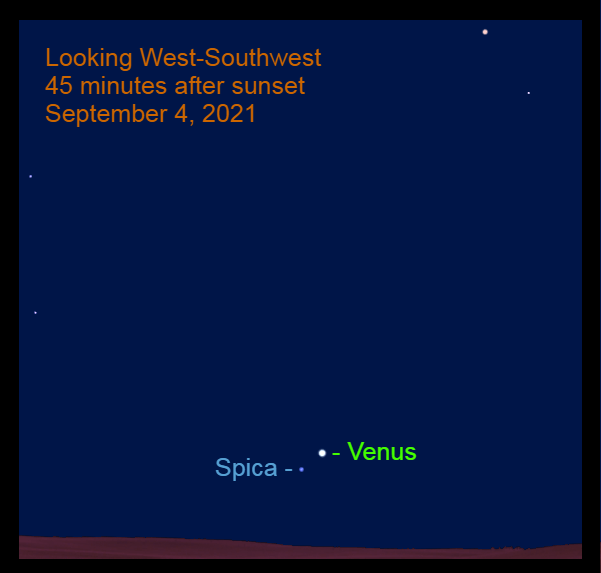 2021, September 4: Forty-five minutes after sunset, Venus is 2.6° to the upper right of Spica.
