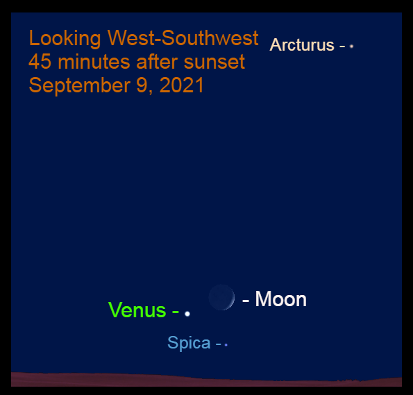 2021, September 9: Forty-five minutes after sunset, brilliant Venus, the crescent moon, and Spica are grouped together in the southwest.