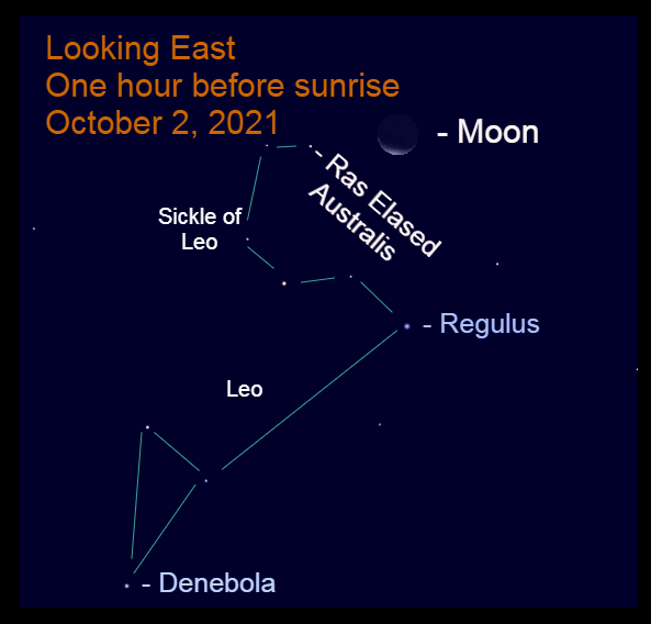 2021, October 2: An hour before sunrise, the crescent moon is 5.5° to the upper right of Ras Elased Australis.
