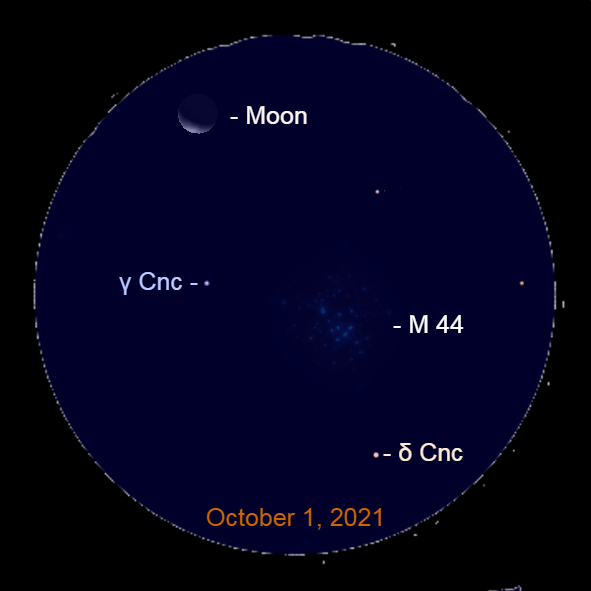2021, October 1: The view of the crescent moon and the Beehive star cluster an hour before sunrise.