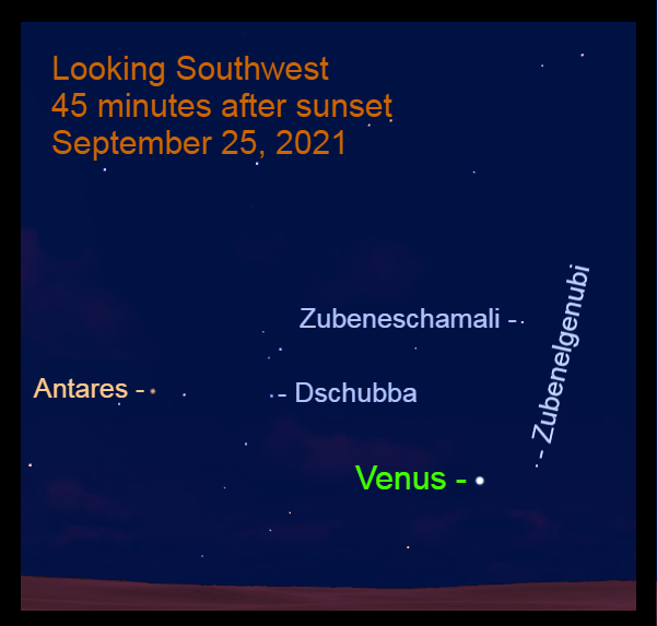 2021, September 25: In the southwest, Evening Star Venus moves eastward through the Classic Scorpion.