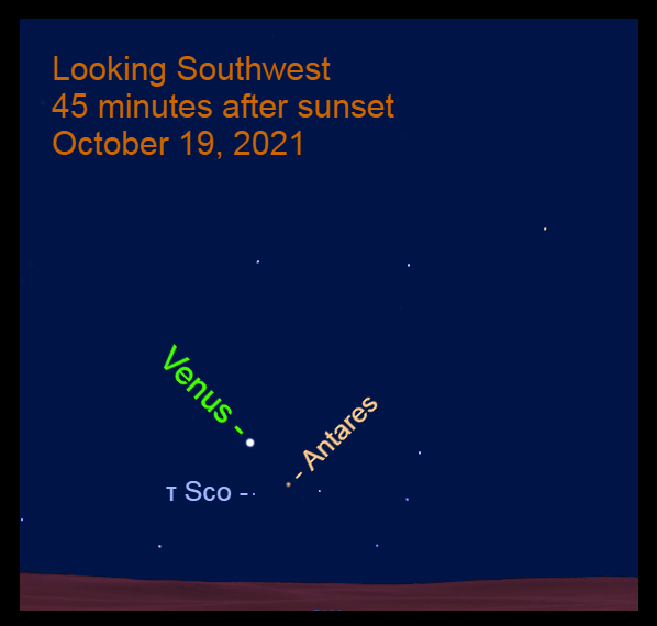 2021, October 19: Brilliant Venus is to the upper left of Antares in the southwest after sundown.