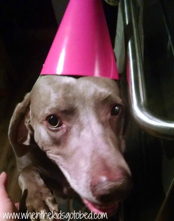 allie birthday