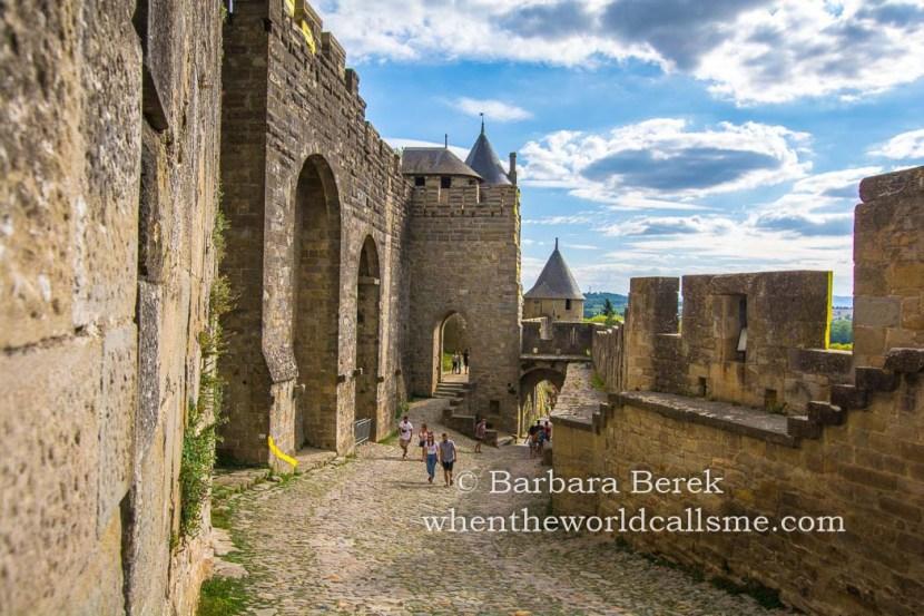Carcassonne DSC 6035 mini