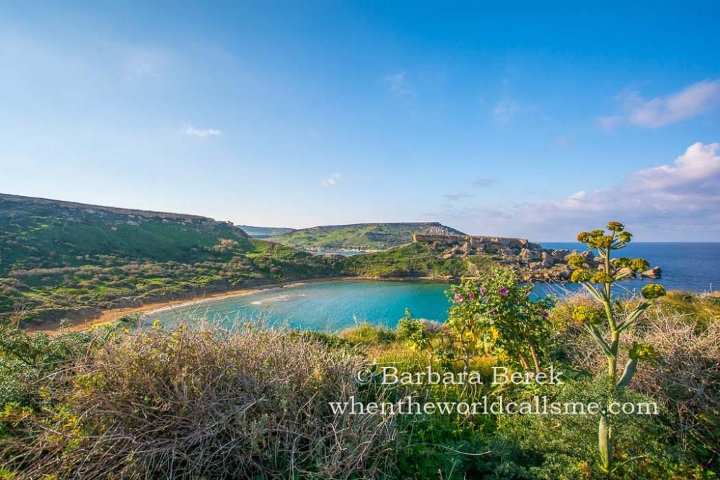 Malta DSC 5295 mini