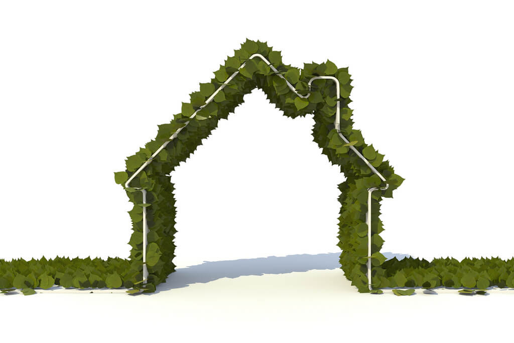 Going green in your home