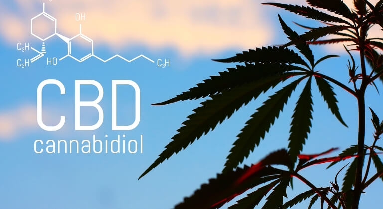 Your body on CBD