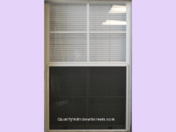 Solar insect screen for window