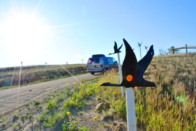 North Dakota is a wild and beautiful place to visit. This post has adventures and unique attractions that you don't want to miss along the Enchanted Highway and in Theodore Roosevelt National Park.