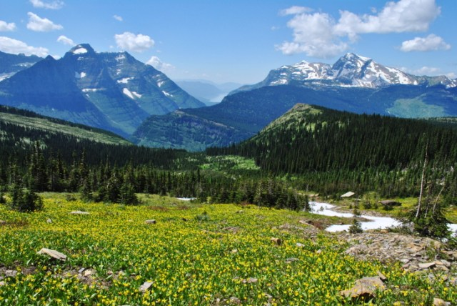 Glacier National Park is teeming with hikes, alpine lakes, wildlife, and stunning views. It had many more surprises for us during our visit. Get all the details about the first half of this glacial mountain adventure.
