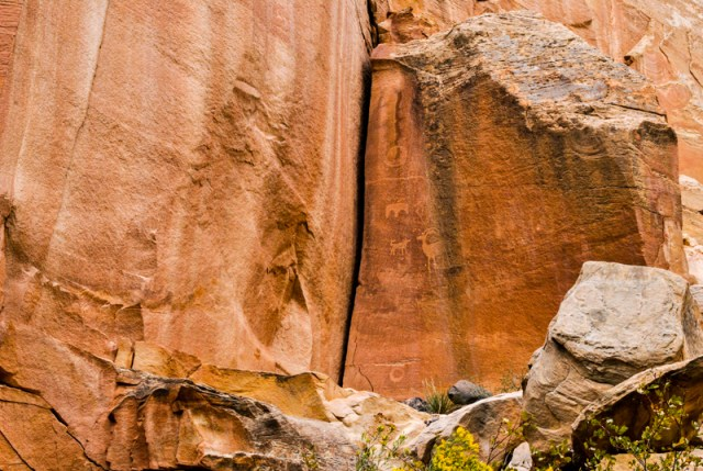 Utah's Capitol Reef National Park is often overlooked for the more visited parks. Find out why you don't want to miss this amazing desert gem.