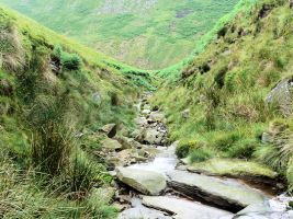 Boar Clough Gill