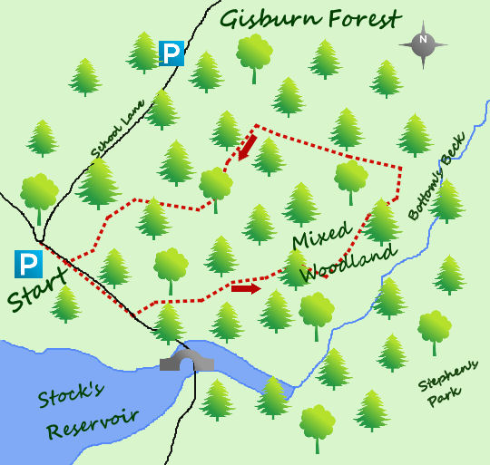 Gisburn Forest map