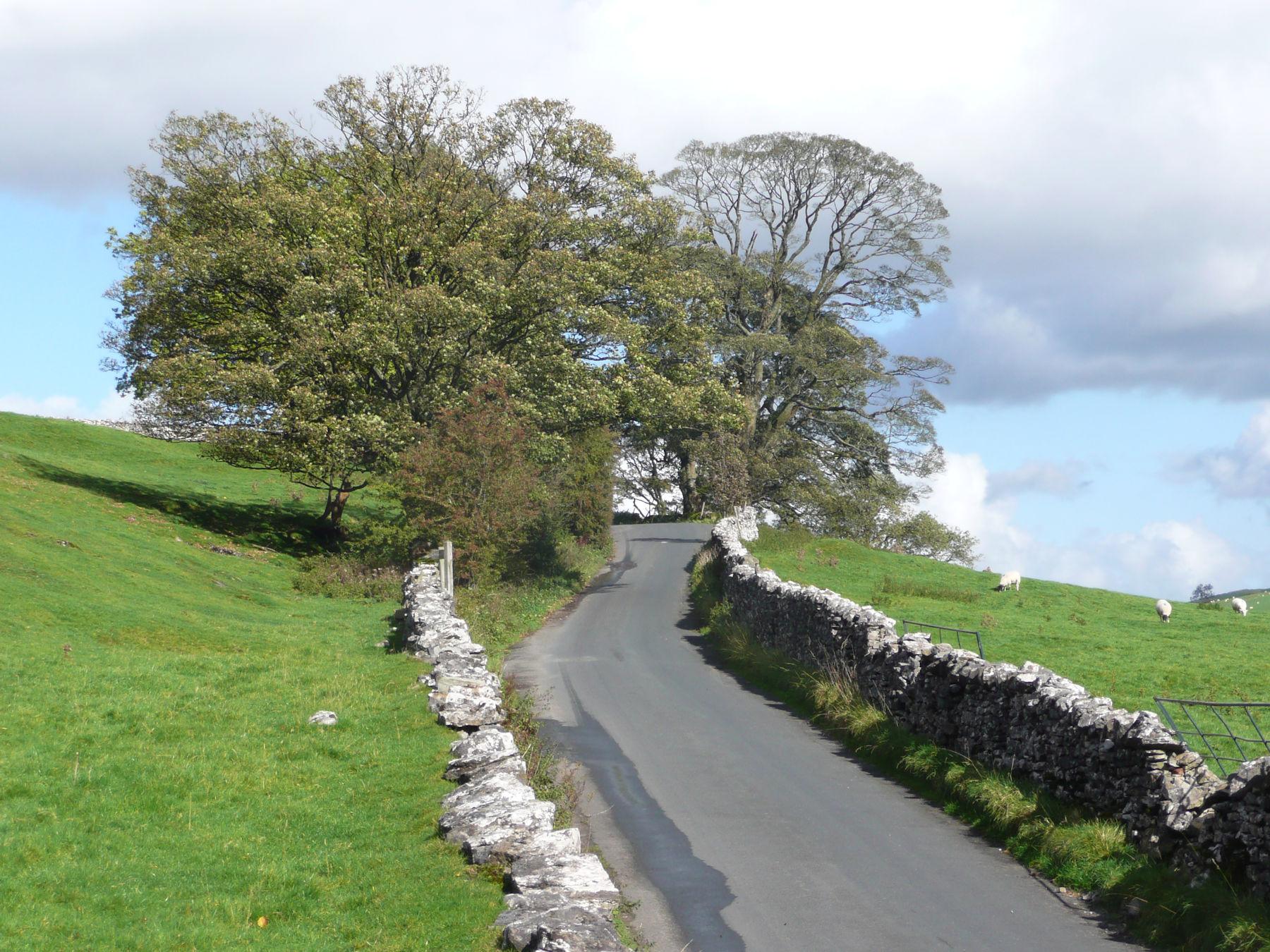 Quiet Lane near Stocks
