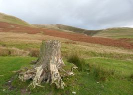Fell Head Howgills