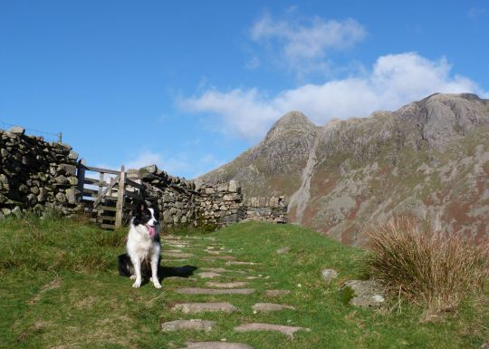 On the Band Bowfell