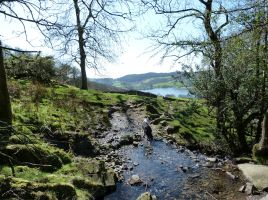 Views over Esthwaite Water