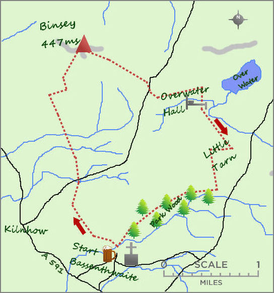 Binsey map