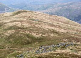 Broad ridge