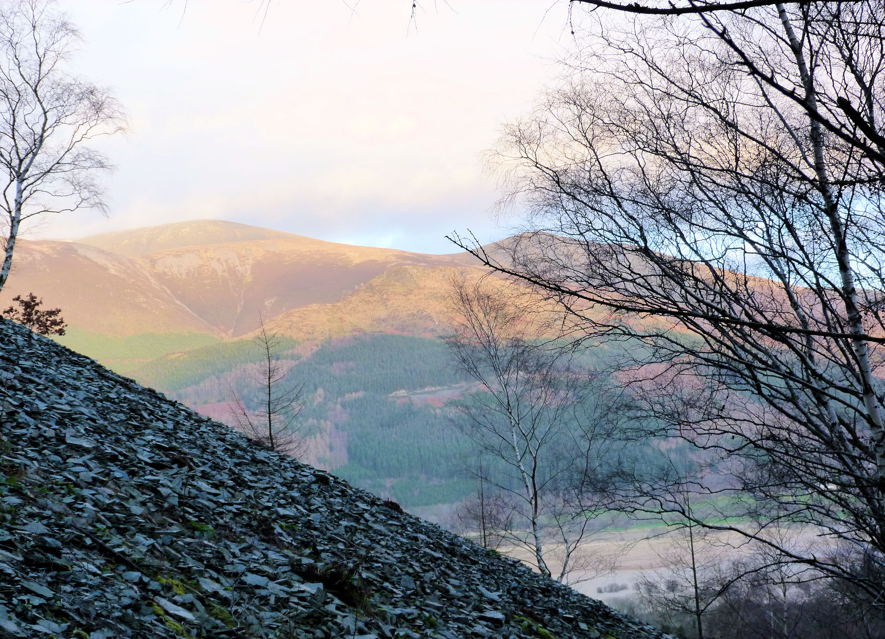 Skiddaw from Barf