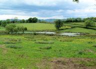 Tilskin Ponds
