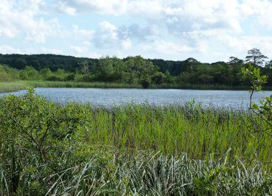 Hawes Water