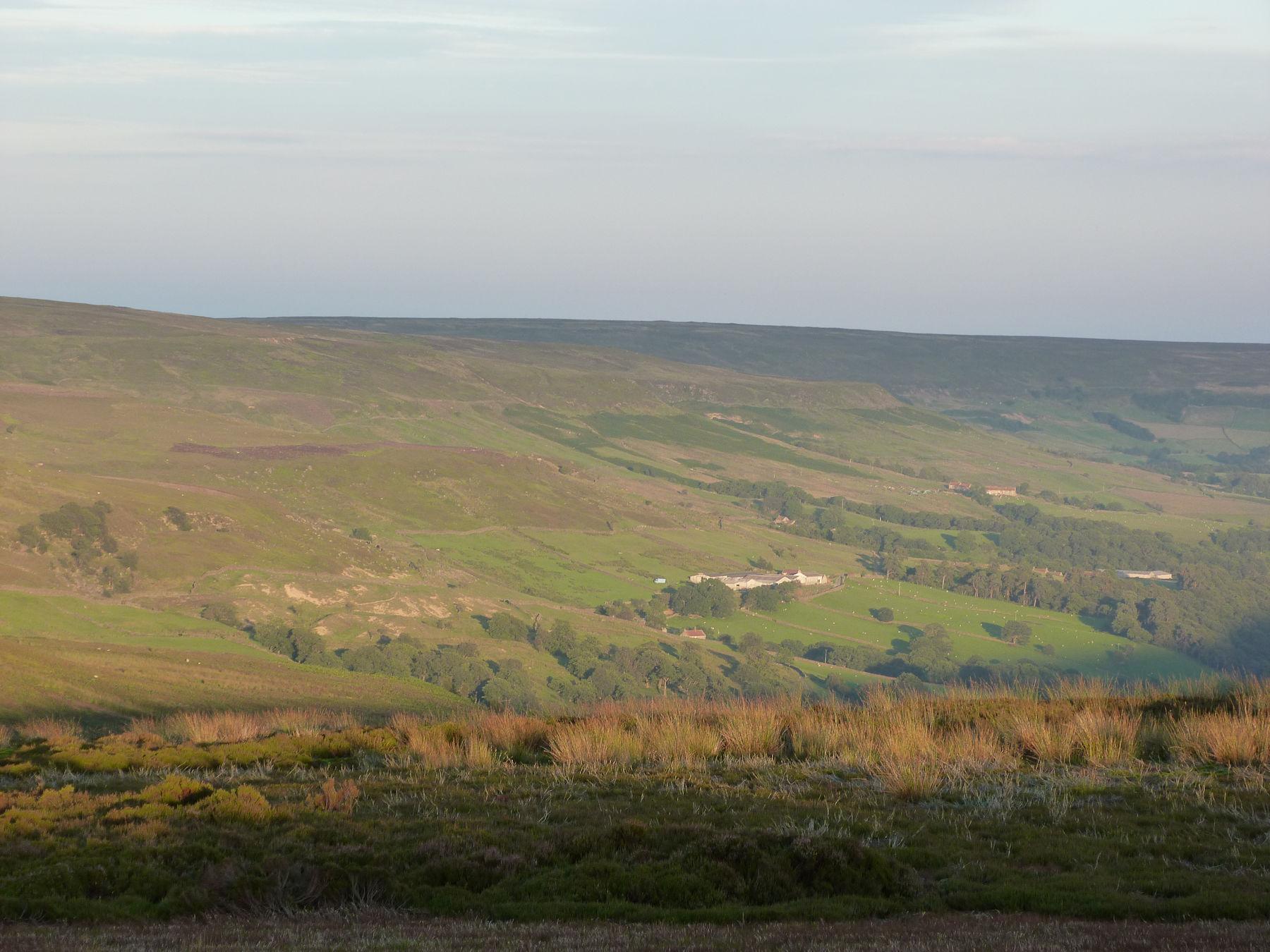 Evening in Farndale