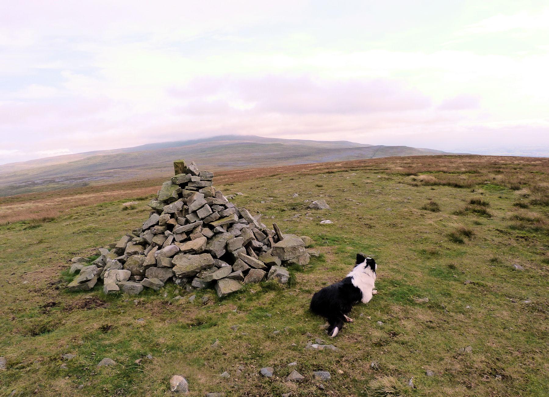 Summit of Melmerby Hill
