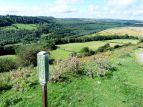 Newton Dale near Levisham