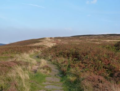 The Moors near Carlton
