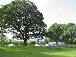 Pretty campsite