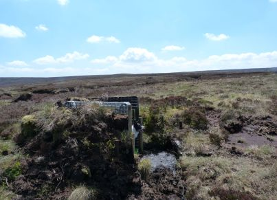 Hareden Fell Butts