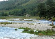 River Skirface