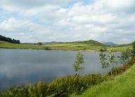 Dubbs Reservoir